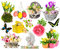 Set of spring flowers, easter eggs, butterfly