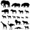 African animals silhouettes set. Livestock animals of tropical zone