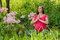 Maternity Yoga peaceful meditation in field of flowers.