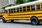 School Bus / Buses in the city