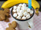 Hot chocolate with marshmallows and cookies