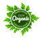 Organic round logo sign label with green leaves