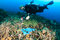 Diver swimming over a discarded plastic bag on a reef