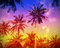Holiday background made of palm trees silhouettes at sunset