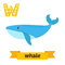 Whale. W letter. Cute children animal alphabet in vector. Funny