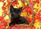 Black kitten in pumpkin basket with fall leaves
