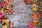 Thanksgiving  greeting background with rye, acorn and fall maple
