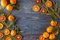 Border, frame from Christmas tree fir branches, dried orange fruit slice on old wooden desk table background. Big copyspace for h