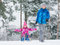 Child play in snow with sled
