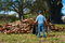 A distraught man with a rake and garbage bag in his hands is standing in front of a giant pile of leaves
