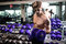Muscular man working out in gym doing exercises with dumbbells, bodybuilder male naked torso abs. Fitness