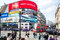 Piccadilly Circus in London busy traffic London red bus people a