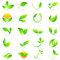 Leaf plant logo wellness nature ecology symbol vector icon design.
