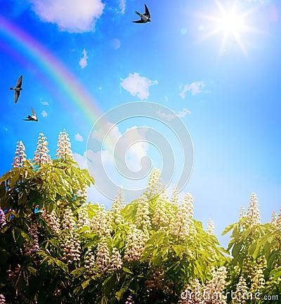 抽象春天风景背景