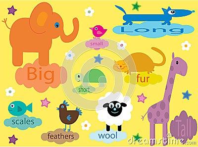 动物培训儿童的收藏