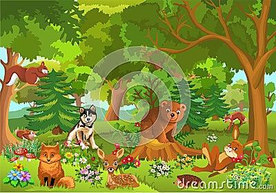 逗人喜爱的动物在森林里