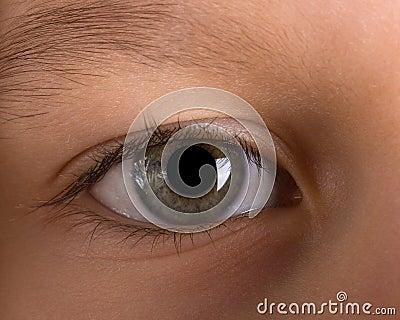 儿童眼睛s 库存照片