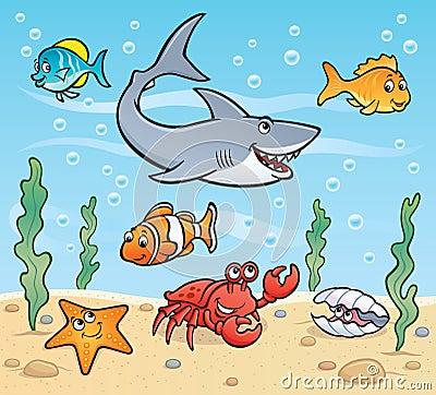 海洋生活场面图片