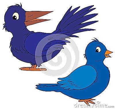 二只五颜六色的蓝色动画片鸟;