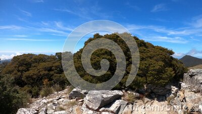 360° panoramic view on Mount Stokes, Marlborough Sounds, South Island, New Zealand. stock video footage
