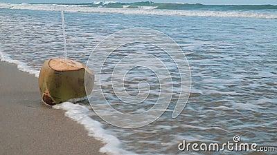 Água de coco video estoque