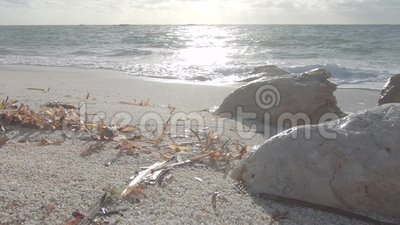 Ángulo de visión retroiluminado de granos de arena blanca cuarzo con olas de mar, hojas posidonia de hierbas marinas en la orilla metrajes