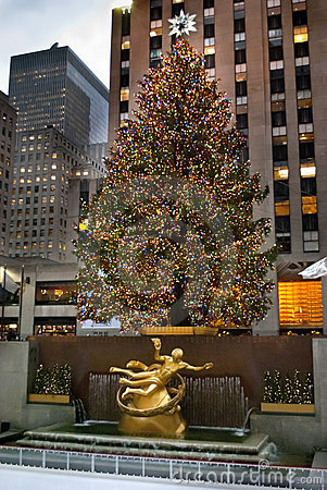 [Imagen: rockefeller-center-tree-thumb17333389.jpg]