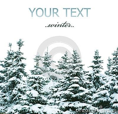 Árvores do inverno
