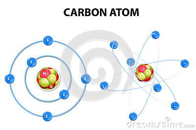 El atomo de carbono y sus componentes