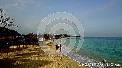 Älskvärda par som går på den karibiska stranden arkivfilmer