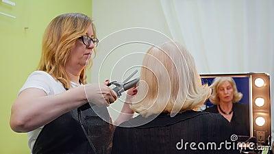 Älterer Frauen-Frisur-Friseur Visit Back View stock video