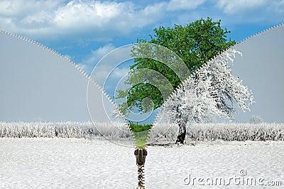 Ändernde Jahreszeiten des Reißverschlusses