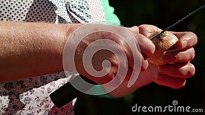 Élevage de l'oignon par la femme de la maison avant cuisson banque de vidéos
