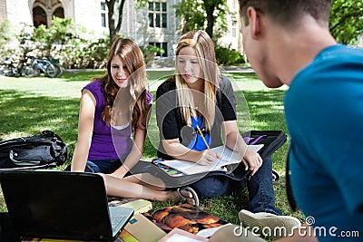 Étudiants étudiant ensemble
