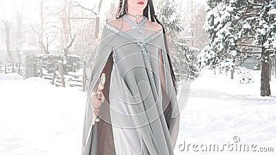 Η πριγκήπισσα παραμυθιού βέβαια σε την, πηγαίνει θαρραλέα στη μάχη να προστατεύσει το σπίτι της, σκοτεινός-μαλλιαρό πρότυπο κομψά απόθεμα βίντεο