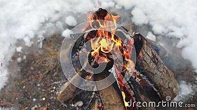 καπνός πυρκαγιάς Πυράκτωση, καίγοντας ξύλο σε μια πυρκαγιά, φωτιές Ζωηρόχρωμη φλόγα και γκρίζα τέφρα, που απανθρακώνονται με το φ απόθεμα βίντεο