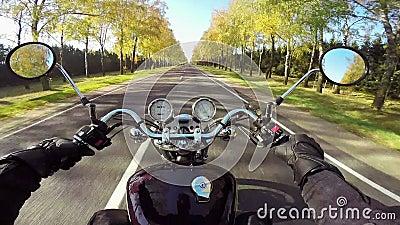 Изумляя катание мотоцикла на красивой дороге Классические крейсер/тяпка навсегда! сток-видео