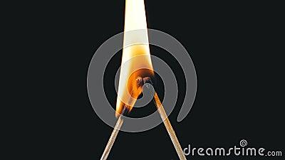 2 спички в форме письма l Lit и ожог на черной предпосылке сток-видео