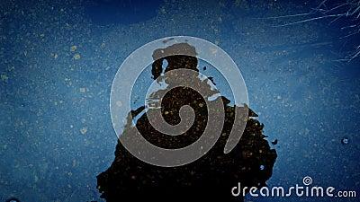 Темная диаграмма готовя отражение воды сток-видео