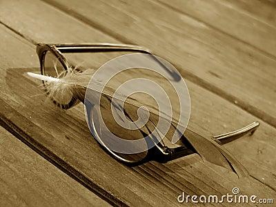 Óculos de sol e pena 2