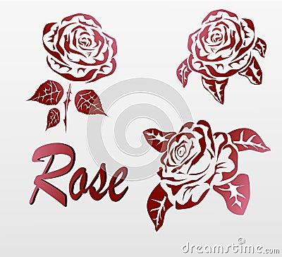 罗斯纹身花刺-全世界喜爱