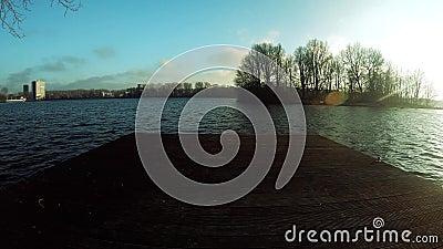 Überraschender Seeblick mit Bäumen Amsterdam Osterpark im Dezember 2018 stock footage