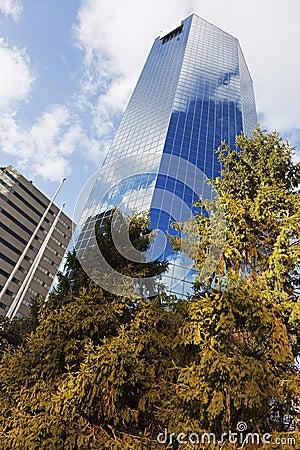 摩天大楼在列克星敦