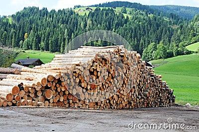 木材木头 库存图片 - 图片