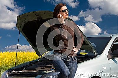 łamany silnik