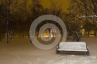 Śnieżna ławka w parku