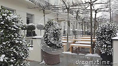 Śnieg w ogródzie zbiory wideo