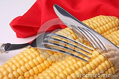 świeża kukurydza