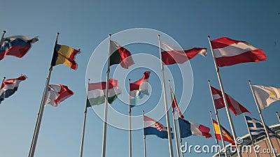 欧盟国旗 库存图片图片