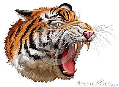 咆哮老虎的头 库存照片